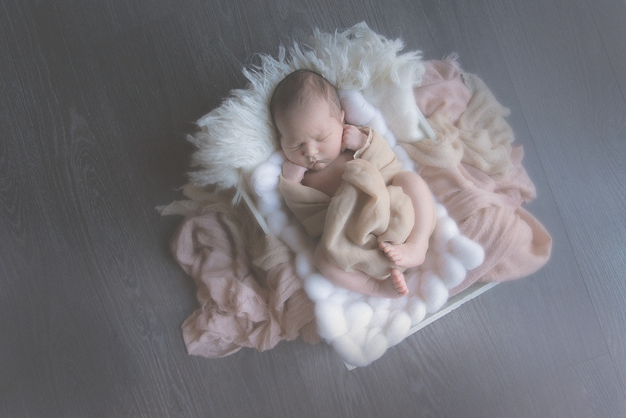 seance photo de naissance en studio photographe bébé famille nouveau né sur tourcoing nord lille - one moment photographie - 1